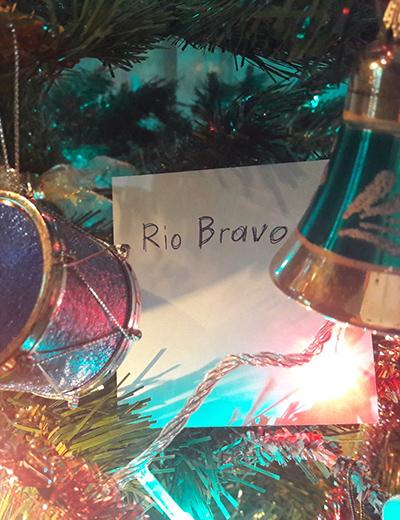 Rio-Bravo-Xmas.jpg